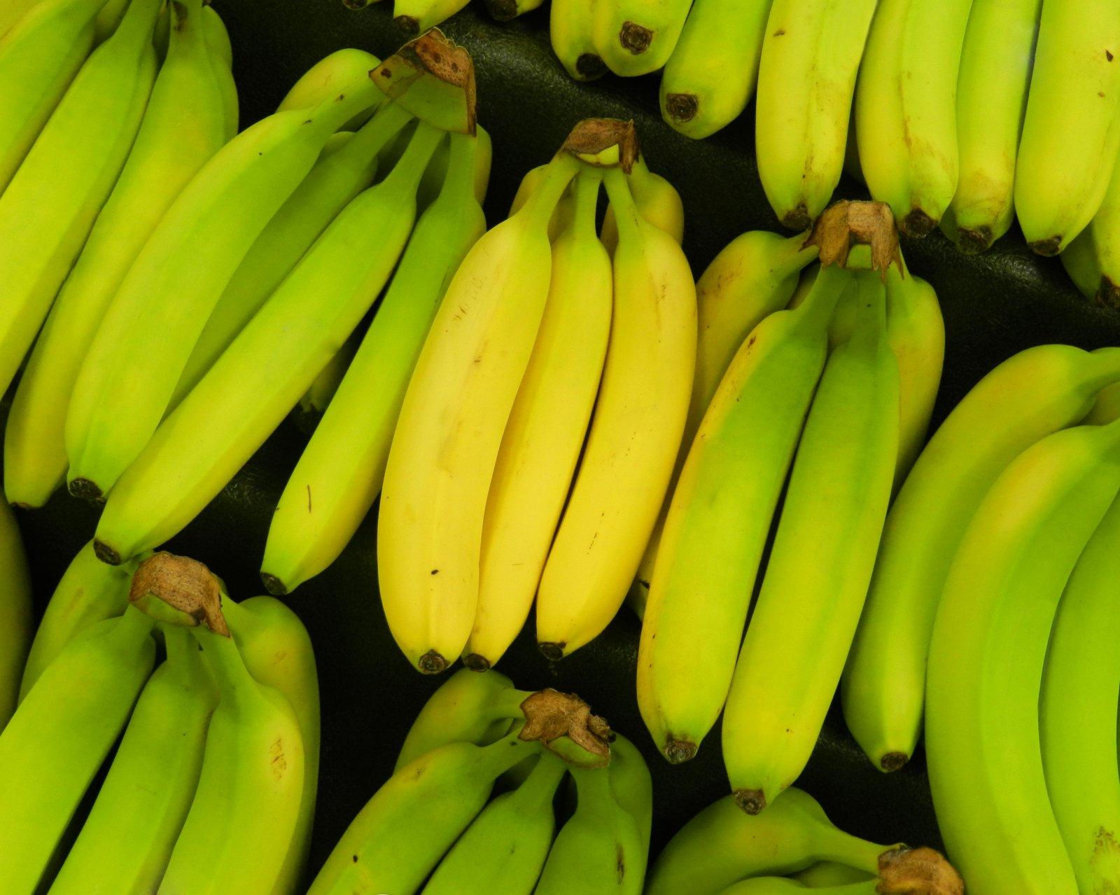 Kuidas suurendada liikme banaani Liikme suurenemine, kui palju