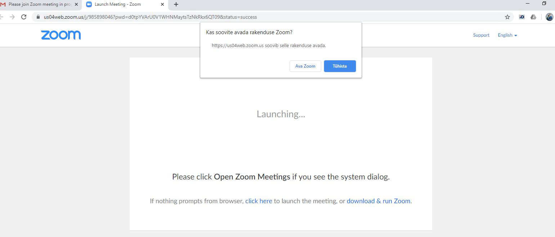 Lae Kuidas Zoom liikme allalaadimine video koos Kuidas suurendada liikme 5cm video